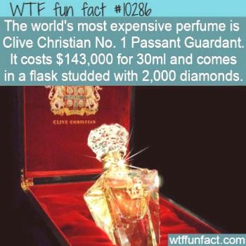 WTF Facts : funny interesting & weird facts  WTF Fun Fact - Most Expensive Perfume  10286 Christian